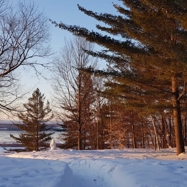 Point de vue sur le Saint Laurent en hiver